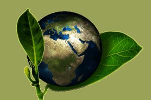 green-code