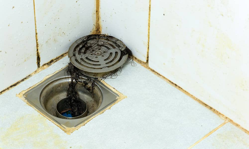 Why does my shower drain smell bad?
